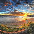 0014 Awe In One Sunset Series At Erie Basin Marina by Michael Frank Jr