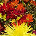 002 Flowers Waiting by Carol McKenzie
