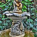 002 Fountain Buffalo Botanical Gardens Series by Michael Frank Jr