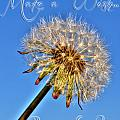 002 Make A Wish With Text by Michael Frank Jr
