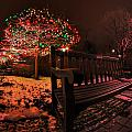 005 Christmas Light Show At Roswell Series by Michael Frank Jr