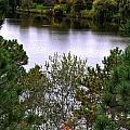 005 Hoyt Lake Autumn 2013 by Michael Frank Jr