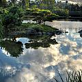007 Delaware Park Japanese Garden Mirror Lake Series by Michael Frank Jr