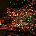 008 Christmas Light Show At Roswell Series by Michael Frank Jr