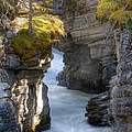 0191 Athabasca Canyon 2 by Steve Sturgill