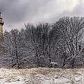 0243 Grosse Point Lighthouse Evanston Illinois by Steve Sturgill