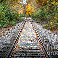 0276 Tracks by Steve Sturgill