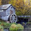 0290 Hyde's Mill Wisconsin by Steve Sturgill