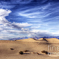 0292 Death Valley Sand Dunes by Steve Sturgill