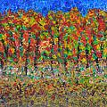 035 Fall Colors by Chowdary V Arikatla
