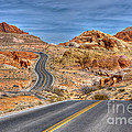 0445 Valley Of Fire Nevada by Steve Sturgill