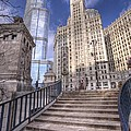 0499 Trump Tower And Wrigley Building Chicago by Steve Sturgill