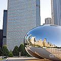 0553 Millennium Park Chicago by Steve Sturgill