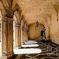 0758 Doge Palace - Venice Italy by Steve Sturgill