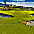 #17 At Chambers Bay Golf Course - Location Of The 2015 U.s. Open Championship by David Patterson