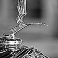 1931 Lasalle Hood Ornament by Jill Reger