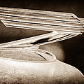 1934 Chevrolet Hood Ornament by Jill Reger