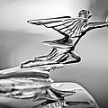 1934 Packard 8 1101 Sedan Hood Ornament by Jill Reger