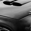 1952 Ferrari 212 225 Barchetta Hood Emblems by Jill Reger