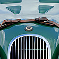 1952 Jaguar Xk 120 John May Speciale Grille Emblem by Jill Reger