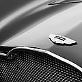 1953 Aston Martin Db2-4 Bertone Roadster Hood Emblem by Jill Reger