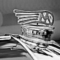 1953 Morgan Plus 4 Le Mans Tt Special Hood Ornament by Jill Reger