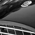 1957 Ac Ace Bristol Roadster Hood Emblem by Jill Reger