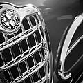 1957 Alfa-romeo 1900c Super Sprint Grille Emblem by Jill Reger