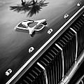 1962 Dodge Polara 500 Grille - Hood Emblem by Jill Reger