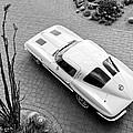 1963 Chevrolet Corvette Split Window -440bw by Jill Reger