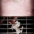 1966 Ferrari 330 Gtc Coupe Grille Emblem by Jill Reger