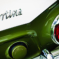 1966 Lotus Cortina Mk1 Taillight Emblem by Jill Reger