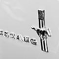 1967 Ford Mustang Side Emblem by Jill Reger