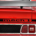 1973 Ford Mustang Mach 1 by Gordon Dean II