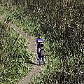 2 Photographers Walking Through Tall Grass by Ashish Agarwal
