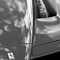 2003 Ferrari Enzo Hood Emblem by Jill Reger