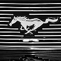2007 Ford Mustang Grille Emblem by Jill Reger
