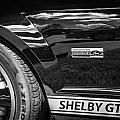 2007 Ford Mustang Shelby Gt500 Painted Bw  by Rich Franco