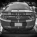 2013 Ford Shelby Mustang Gt500 by Rich Franco