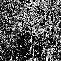 1-66 Manifestations Of Eternity by Grigori Grabovoi