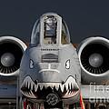 A-10 Warthog by John Black