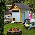 A Backyard Chicken Coop In Bellingham by Michael Hanson