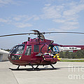 A Bo 105pah Helicopter Of The German by Timm Ziegenthaler