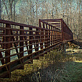 A Bridge Too Far by Mother Nature