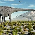 A Herd Of Diplodocus Sauropod Dinosaurs by Mark Stevenson
