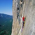 A Man Aid Climbing by Corey Rich