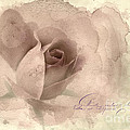A Rose By Any Other Name by Betty LaRue