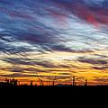 A Silhouette Sunset  by Saija  Lehtonen