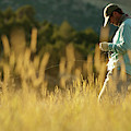 A Young Man Fly-fishing At Sunset by Jeff Diener