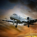 A10 Thunderbolt II by J Biggadike